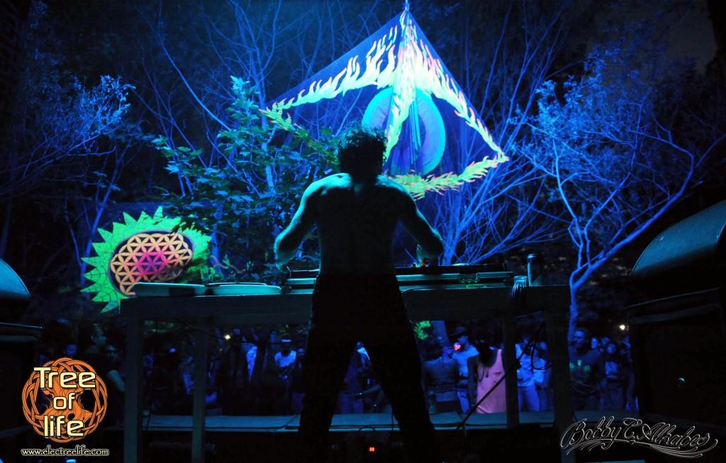 פסטיבל עץ החיים tree of life 2017 תפאורה בלילה