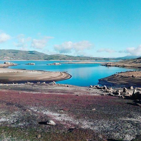 אגם פורסט סול פסטיבל