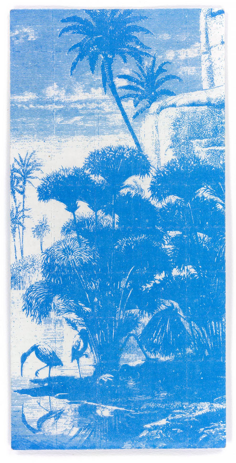 קרטון אסיד הגונגל הכחול