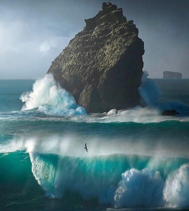 סלע בחוף ימה של איסלנד